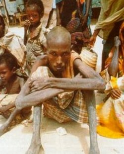 Un obispo advierte que Somalia está al borde del peor desastre humanitario del mundo