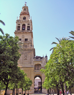 El alcalde de Córdoba y la Junta Islámica critican la firmeza de Mons. Demetrio Fernández sobre la Catedral