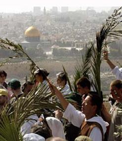 Peregrinos en Tierra Santa participan en la procesión de entrada en Jerusalén