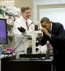 Un juez federal frena la decisión de Obama sobre financiación pública de investigaciones con células madre embrionarias