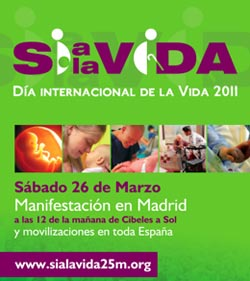 El Consejo de Laicos de Madrid pide a los católicos que asistan a la Manifestación por la Vida