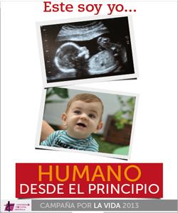 Los obispos españoles reclaman que se modifique urgentemente la legislación sobre el aborto