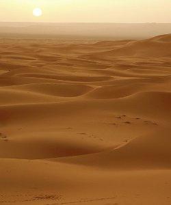 92 personas, en su mayoría mujeres y niños, mueren en el desierto del Sáhara mientras intentaban emigrar