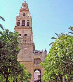 La Dirección General del Patrimonio de Estado concluye que la Catedral de Córdoba es propiedad de la Iglesia desde 1236