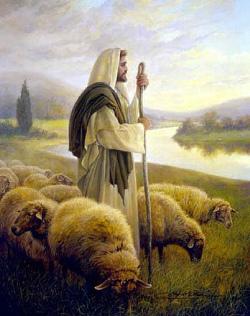 Papa Francisco: «todo viene de la gracia y nuestra fuerza real está únicamente en seguir al Señor Jesús»