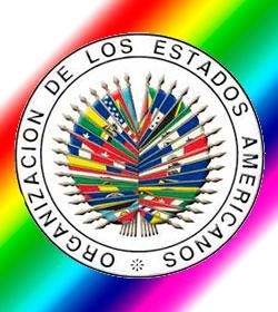 La OEA no impondrá criterios en matrimonio homosexual y aborto