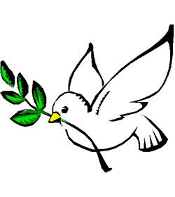 Sacerdotes e imanes promueven conjuntamente la paz interreligiosa en Egipto