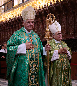 El Cardenal Müller invita a «no vivir un cristianismo de rebajas»