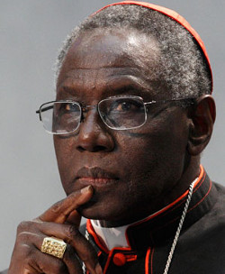 Cardenal Sarah: «recemos por esos pastores que dejan a las ovejas del rebaño del Señor a merced de los lobos»