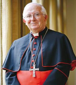 El cardenal Cañizares asegura que si los partidos defendieran la ecología no estarían a favor del aborto