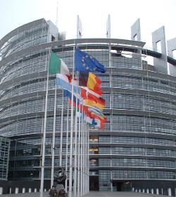 El Parlamento Europeo pretende decidir cómo se educa a los niños en el colegio y en casa