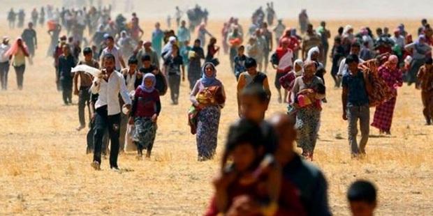 El amor y la acogida de la Iglesia versus la locura del ISIS