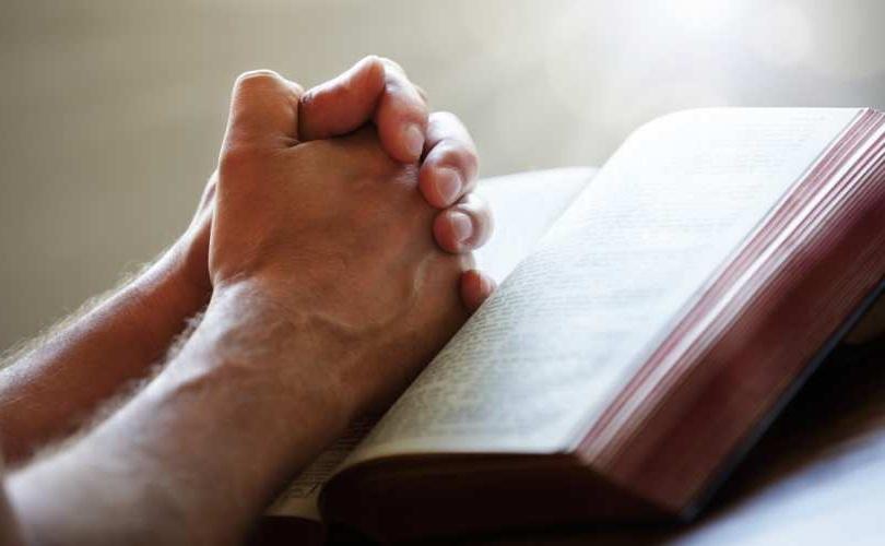 Obispos de Estados Unidos invitan a los fieles a unirse a la novena de la Vida