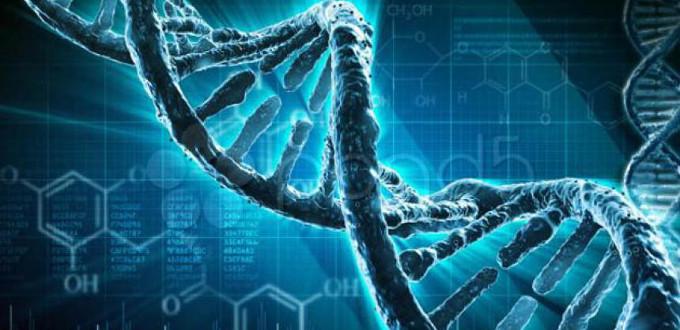 El Dios de la Fe y el Dios del Genoma