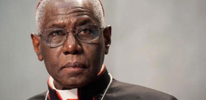 El cardenal Sarah rechaza su elección para un comité clave en el Sínodo Juvenil del Vaticano