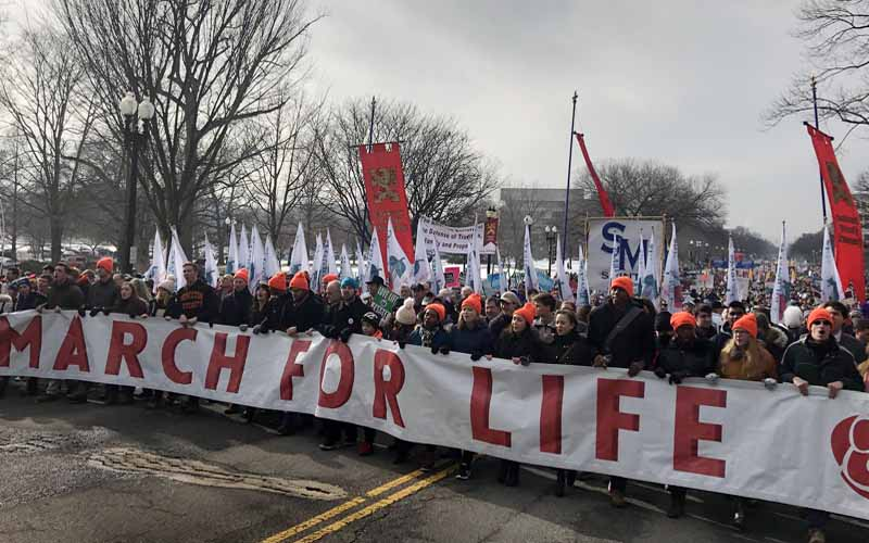 Resultado de imagen para marcha derecho a la vida en Estados Unidos