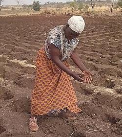 2.3 millones de personas podrían pasar hambre en Zambia según Caritas