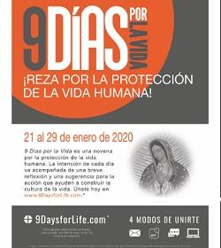 Estados Unidos se prepara para vivir la campaña «9 días por la vida», por el respeto y la protección de toda vida humana