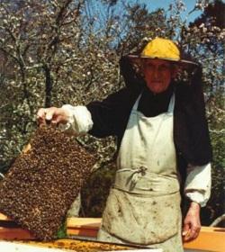 El monje benedictino que cambió para siempre la apicultura occidental